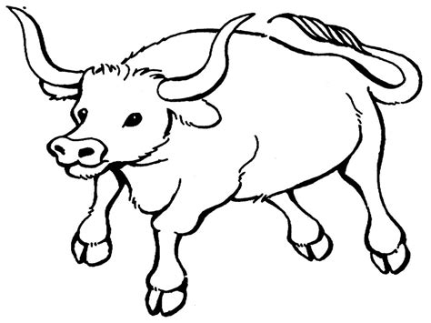 Desenhos De Búfalos Para Imprimir E Colorir
