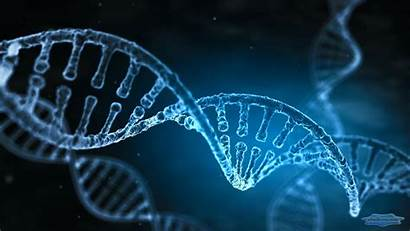 Dna Helix Double Strand Mysterious Apk Data