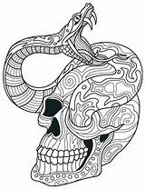 Skull Coloring Pages Sugar Snake Adult Adults Rattlesnake Skulls Printable Print Colouring Drawing Dead Ball Python Intricate Books Mandala Sheets sketch template