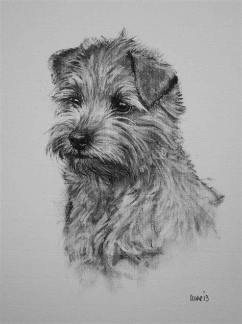 norfolk terrier dog print dog lover gift wall art le