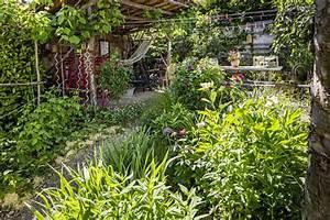 Dekorative Bäume Für Kleine Gärten : g rten des jahres grimm f r garten naturpools und landschaftsg rtner ~ Markanthonyermac.com Haus und Dekorationen