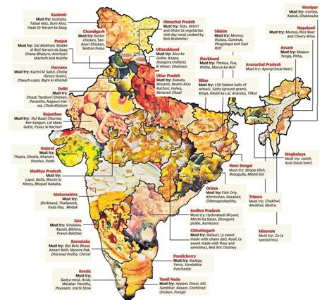 different types of cuisines in the indian food diversity humanium we children 39 s rights happen