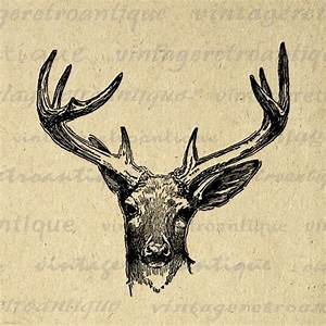 Printable Deer Artwork Antique Deer Graphic Download Deer ...