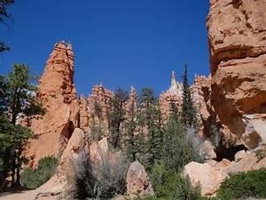 Bryce Canyon Sehenswürdigkeiten : queen 39 s garden trail bryce canyon nationalpark bewertungen und fotos tripadvisor ~ Buech-reservation.com Haus und Dekorationen