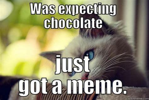 Sad Cat Meme 1