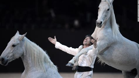 horse horses dance jumping incredible cnn french standing equestrian france olympics amazing riding down same most roll performance horseman telepathic