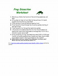 Worksheets Frog Dissection Worksheet Answer Key frog dissection worksheet answers rringband best 25 ideas about find what youll love