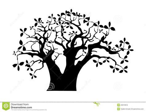 Baobab Stock Vector. Image Of Savannah, Trunk, Powerful