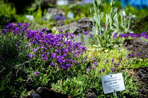 Der Botanische Garten Wien Eine Oase Inmitten Der Stadt