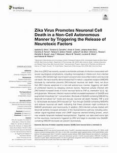 (PDF) Zika Virus Promotes Neuronal Cell Death in a Non ...