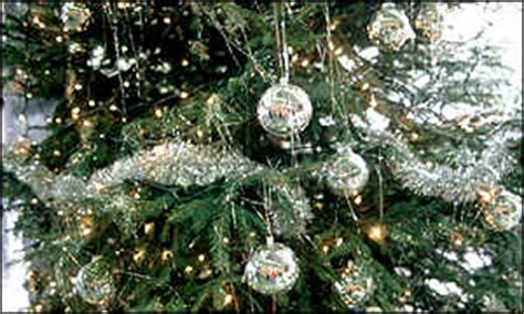 real christmas trees glasgow news scotland branching out at christmas 4259