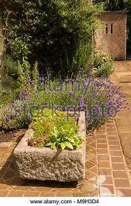 Pflanzen Auf Stein : alpine steingarten mit wasserspiel stockfoto bild 36811755 alamy ~ Frokenaadalensverden.com Haus und Dekorationen