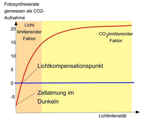 Licht Als Abiotischer Umweltfaktor by Umweltfaktor Licht Stoffwechsel Abitur Vorbereitung