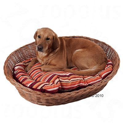 corbeille en osier pour chien zooplus