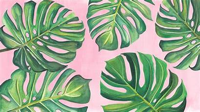 Backgrounds Monstera Wallpapers Mirror Leaf Kenmark Squarespace