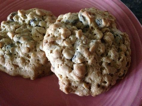 Yup, oatmeal cookies can be made gluten free! BEST sugar-free OATMEAL RAISIN COOKIES * soft & chewy - Cindy's ON-Line recipe box