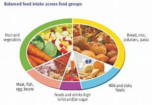 What Is The Nutritional Value Of The Main Food Groups