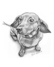 Dachshund Dog Pencil Drawing