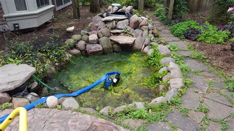 Clean Backyard Pond by Koi Pond Cleaning Contractor Central Tx