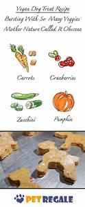 Vegan Dog Treat Recipe - Bursting with so many veggies ...