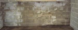 Remontée Capillaire Mur : remont es capillaires maison humide toulouse ~ Premium-room.com Idées de Décoration