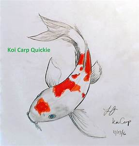 Drawing A Koi Carp - YouTube