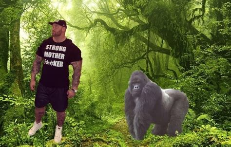 How Strong Is a Silverback Gorilla