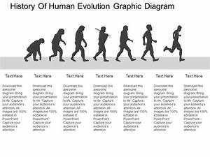 History Of Human Evolution Graphic Diagram Flat Powerpoint
