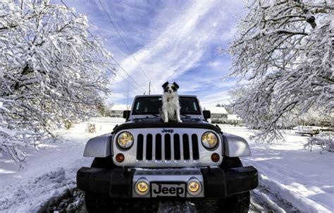 jeep snow wallpaper wallpaper dog machine snow jeep wrangler winter jeep