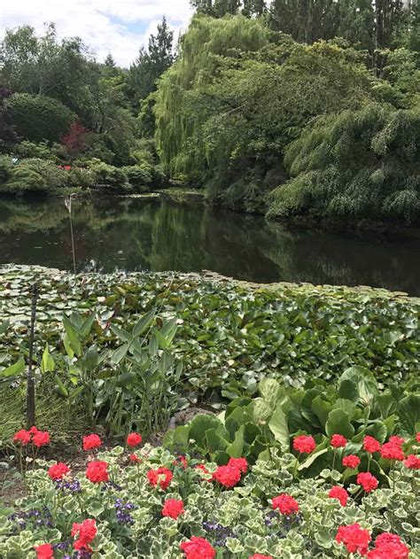 discover  stunning butchart gardens  victoria canada