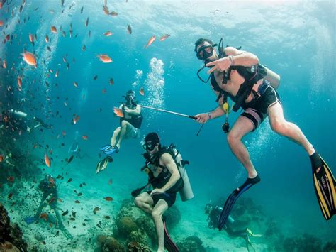 Dive Koh Tao - try dive koh tao a one day scuba diving experience