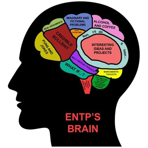 Entp Memes - 115 best images about entp on pinterest personality types intj and myers briggs personality types