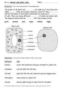 Science Year 7 Revision Worksheets