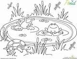 Pond Coloring Worksheets Worksheet Pages Kindergarten Animals Clipart Preschool Education Printable Frog Sheets Habitat Crafts Frogs Preschoolers Garden Spring Theme sketch template