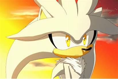 Silver Cream Deviantart Hedgehog Sonic Icy Shadow