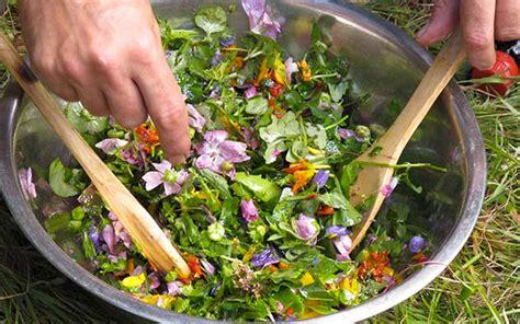 bureau vall馥 belfort cuisiner les herbes sauvages 28 images cueillir et cuisiner les aromatiques sauvages recettes conseils et confidences cueillir et cuisiner