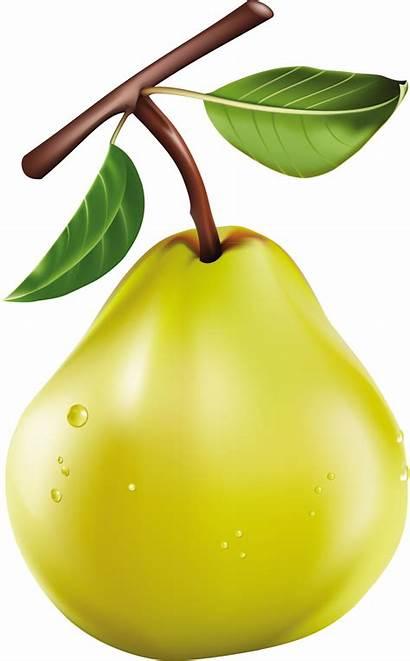 Vegetables Clipart Watercolor Clip Fruit Fat Meyve