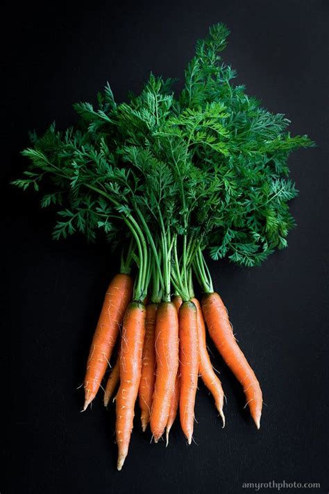 carrots food photography photo print large wall art