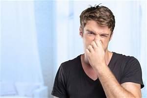 Klärgrube Geruch Beseitigen : so entfernen sie unangenehme ger che aus der mikrowelle ~ Whattoseeinmadrid.com Haus und Dekorationen