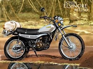 Honda Mt250 31100