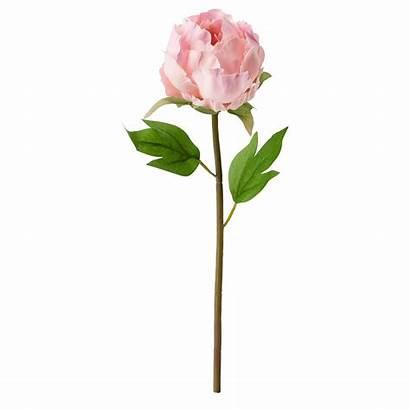 Flower Artificial Ikea Peony Pink Smycka