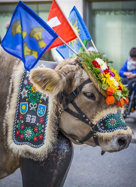 swiss  parade alpine festival