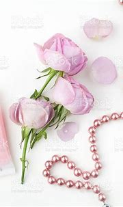 Pink Roses And Pearl Necklace On White Background Top View ...