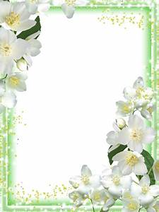 Transparent Green Flowers Frame | pictures | Pinterest ...