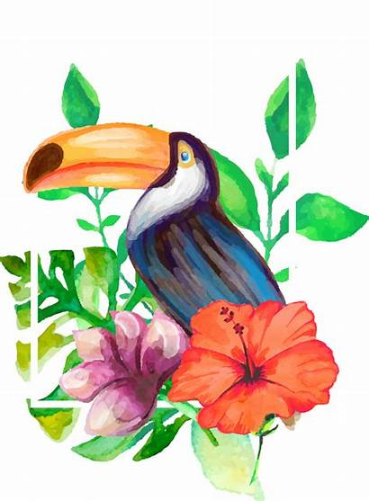 Toucan Clipart Pineapple Watercolor Transparent Realistic Drawing