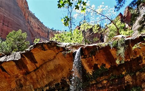 middle emerald pools trail  zion national park projected