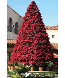 poinsettia tree frame 12 5 13 5 w plants