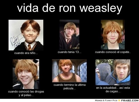 Ron Weasley Meme - the gallery for gt funny harry potter memes draco