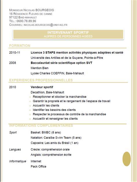Modèle Cv Professionnel 2016 by Exemple De Cv Projet Professionnel Sle Resume