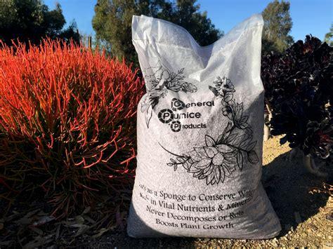pumice for gardening using succulents to evoke water the water saving garden